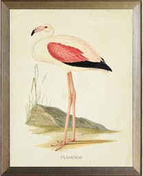 Flamingo with pink wing in distressed metallic frame Pink Kids' Wall Art