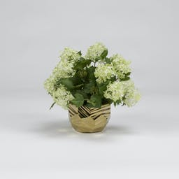 Snowball Branches in Ceramic Bowl Gold