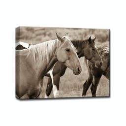 Horses by Bartlett Hayes Canvas Art Brown