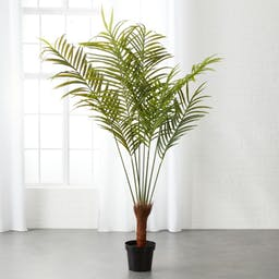 Potted Faux Palm Tree 5.5'