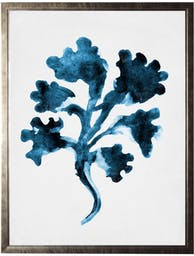 Coral C in pewter shadowbox Blue Wall Art