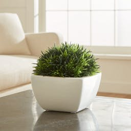 Faux Potted Moss