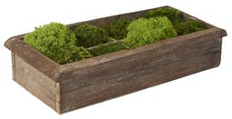 Preserved Mood, Shag And Deer Mosses In Long Wooden Rectangle Planter