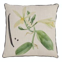 Vanilla Orchid Pillow - Poly Filled