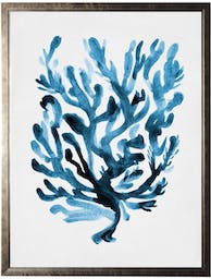 Coral A in pewter shadowbox Blue Wall Art