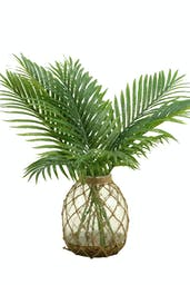 Cycas Palm Fronds In Glass Jug