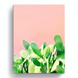 Heat Rise Wrapped Canvas Succulent Wall Art, 40 x 30 Pink