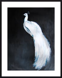 """White Peacock II, 28"""" X 36"""", Black Wood Frame, With Matte"""