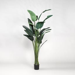 Potted Faux Bird of Paradise Black