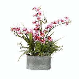 Pink Orchid Floral