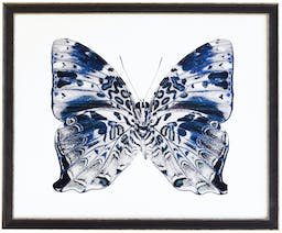Blue and Grey butterfly in black and silver moulding Blue Kids' Wall Art, 18x16