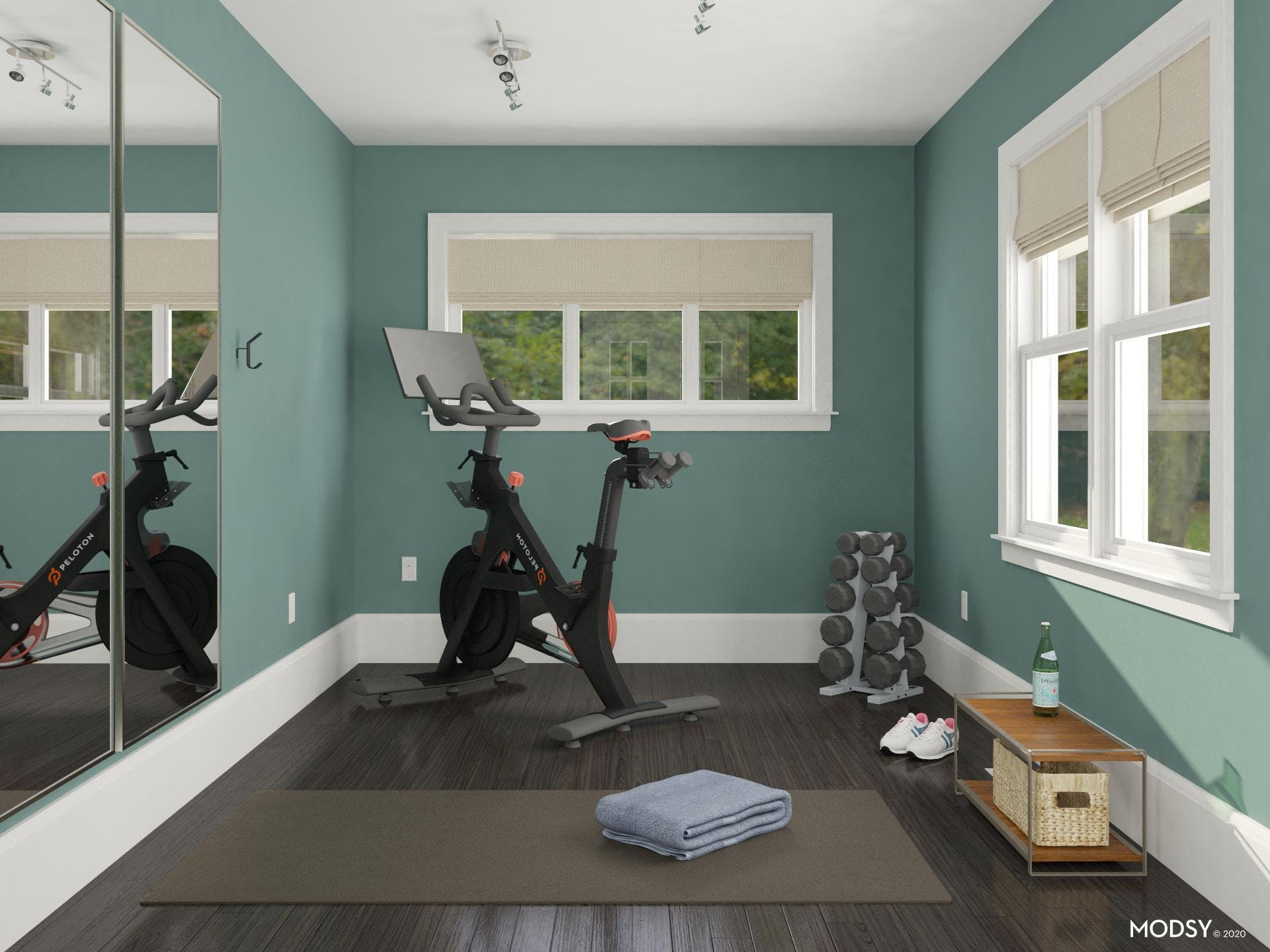 Home Gym in Blue Green